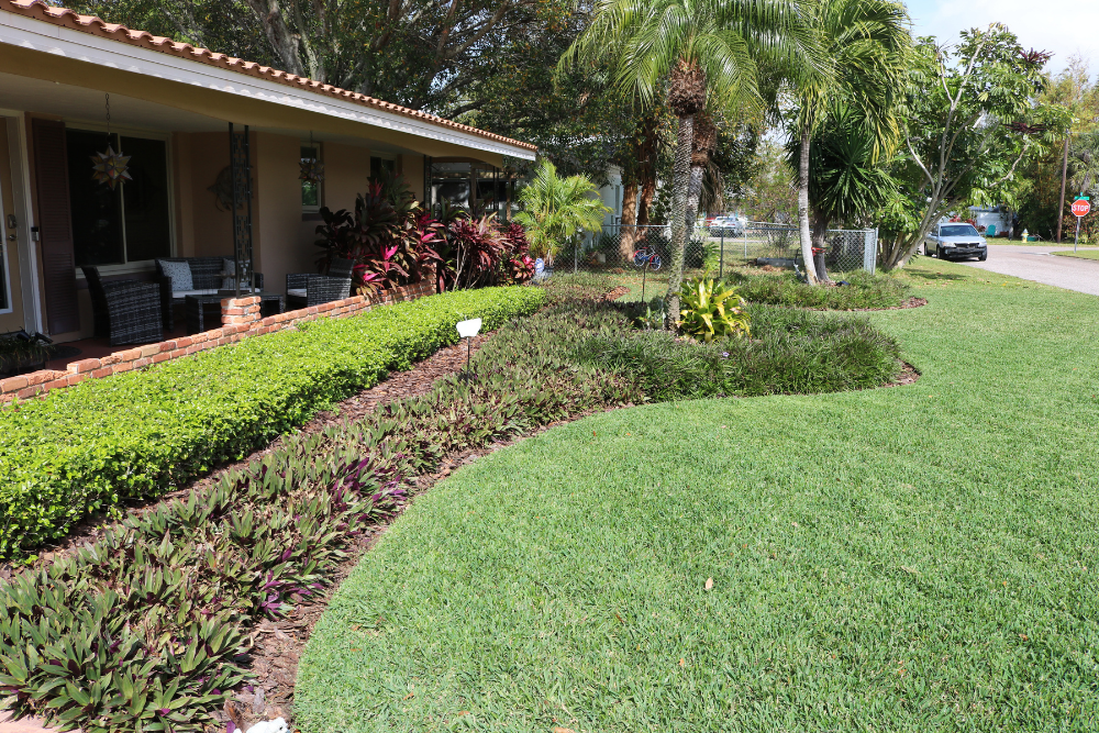 Landscaping Examples